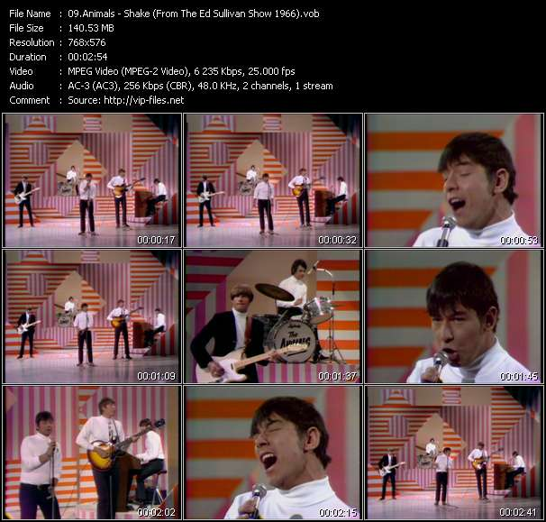 Image of: Eric Burdon Animals Music Video Shake from The Ed Sullivan Show 1966 Hqmusicvideoscom Music Video Of Animals Dont Bring Me Down from The Ed Sullivan